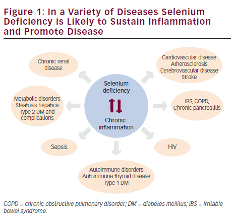 Selenium and Inflammation— Potential Use and Future