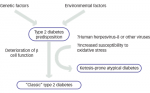 The Double Burden of Infectious Diseases and Diabetes— A Bidirectional Relationship
