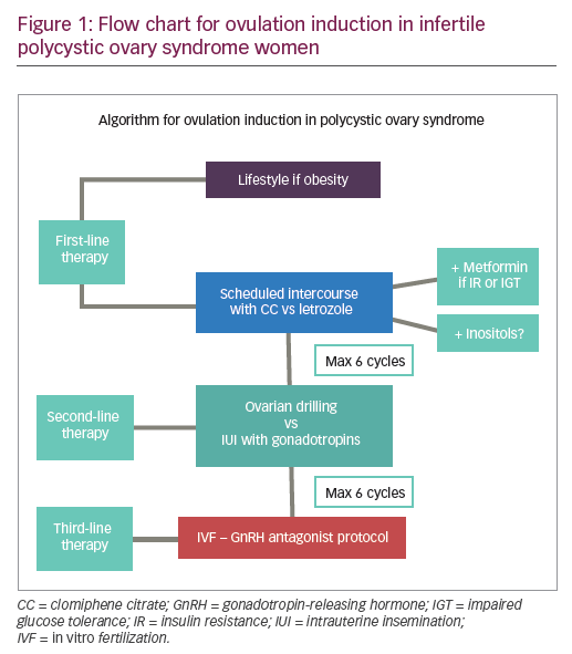 Management Options for Infertile Women with Polycystic Ovary