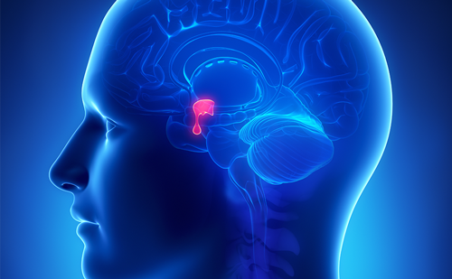 Functioning Pituitary Adenomas – Current Treatment Options and Emerging Medical Therapies