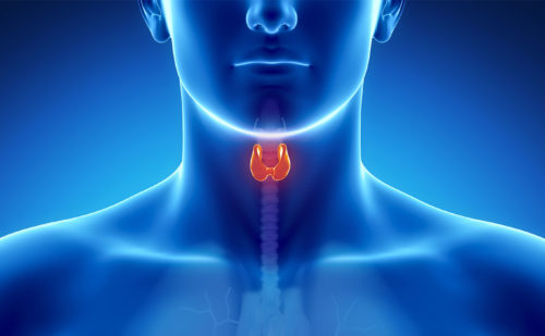 Anticancer-drug Induced Thyroid Dysfunction