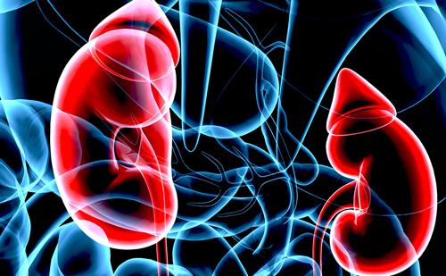 Hyperinsulinaemic Hypoglycaemia and Polycystic Kidney Disease – A Rare Case Concerning PMM2 Gene Pleiotropy