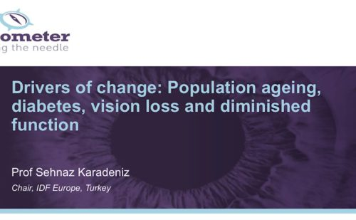 DR Barometer – Drivers of change: Population ageing, diabetes. vision loss and diminished function